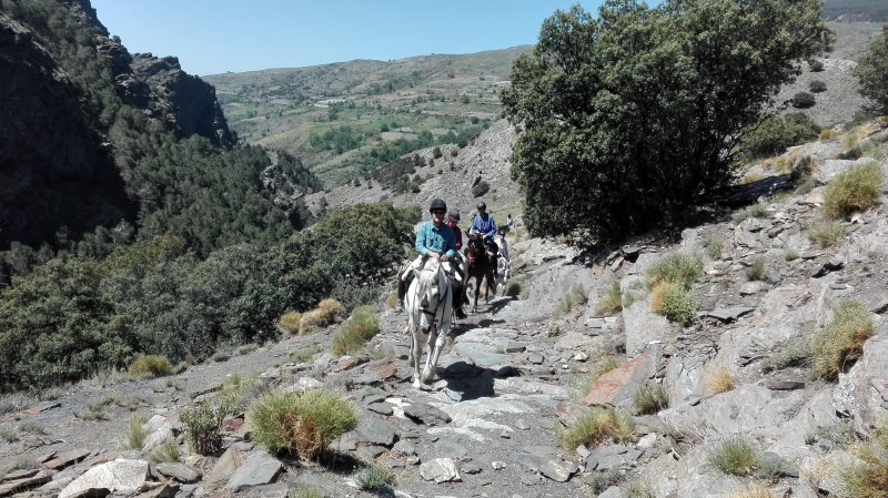 Horse riding on rocky trails